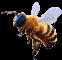 Afbeelding voor  Bee Simulator