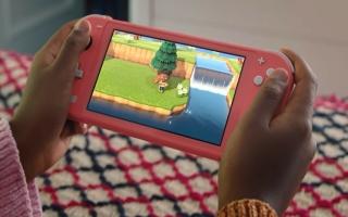 De Nintendo Switch Lite gebruik je enkel in handheld-mode en kan je dus niet op de tv gebruiken.